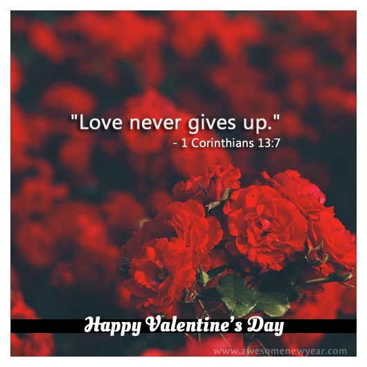 cute Valentines Day Quotes & Sayings