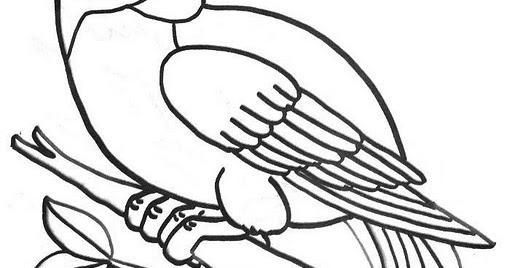 Blog Megadiverso Tucanes Para Pintar Y Descargar