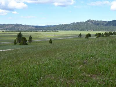 Pelajari Dahulu Kriteria Investasi Tanah Terbaik Sebelum Membelinya