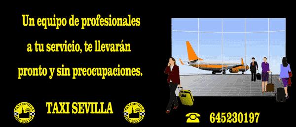 Traslados al Aeropuerto de Sevilla.