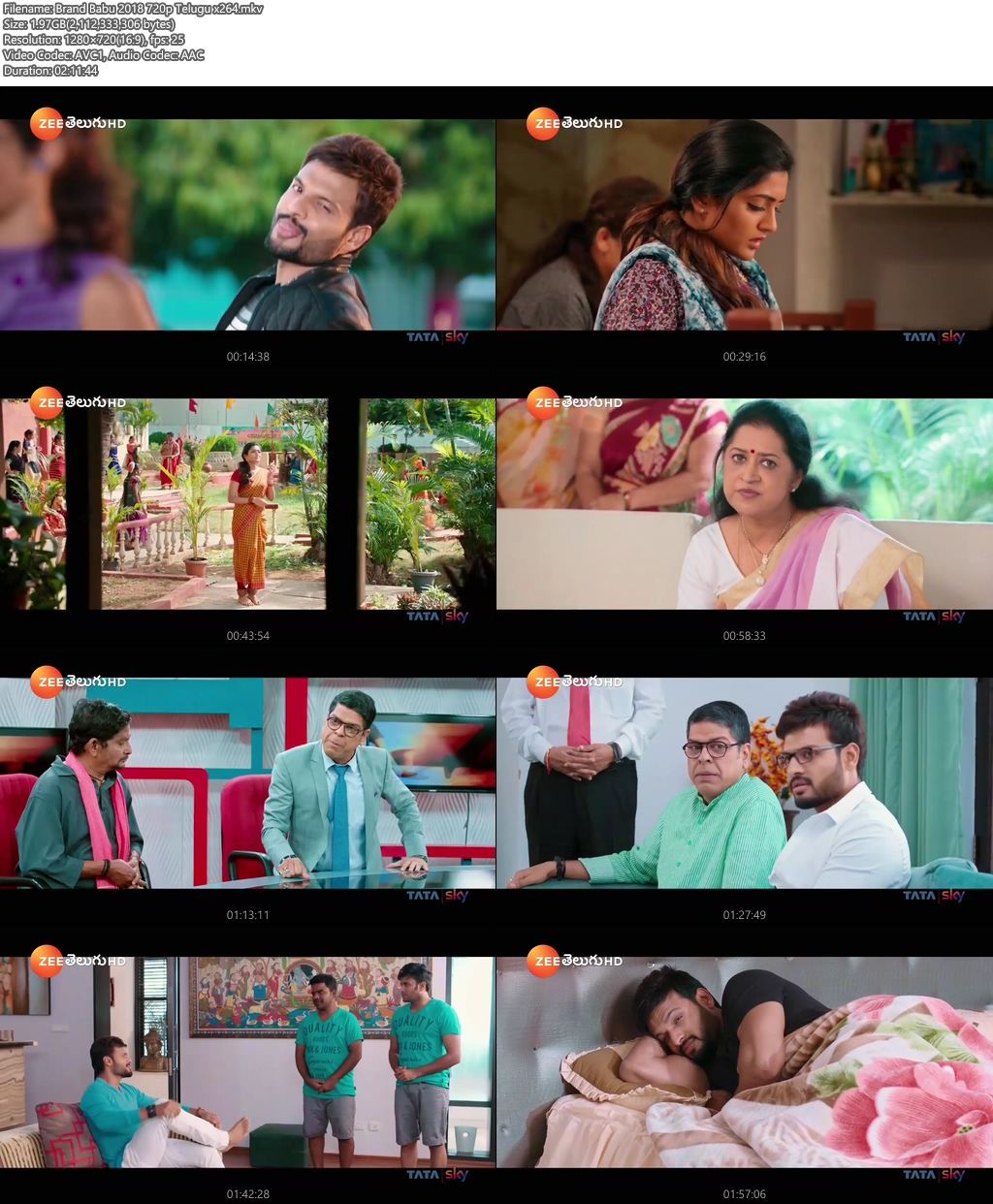 Brand Babu 2018 720p Telugu x264 | 480p 300MB | 100MB HEVC Screenshot