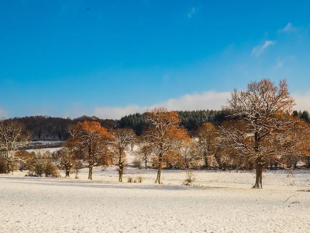 Allier, winterlandschap