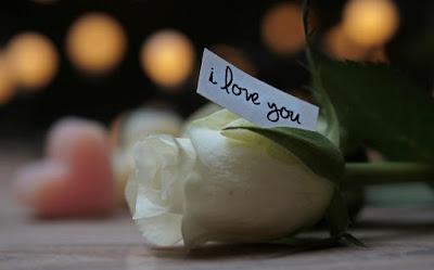 Bahasa Lampung Aku Cinta Kamu, Aku Suka Kamu