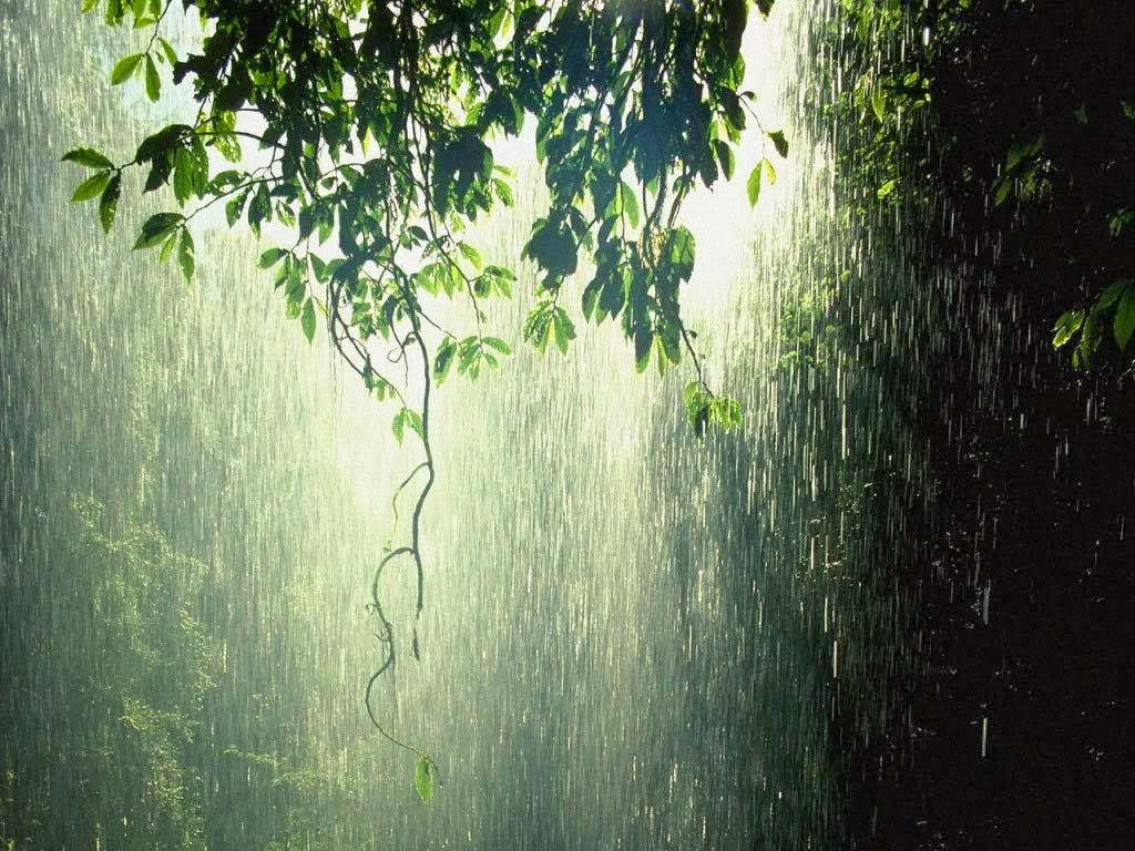 Learning Islam Blog Miracles of the Quran Rainwater is Fresh and Can