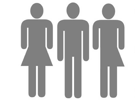 define compulsive heterosexuality