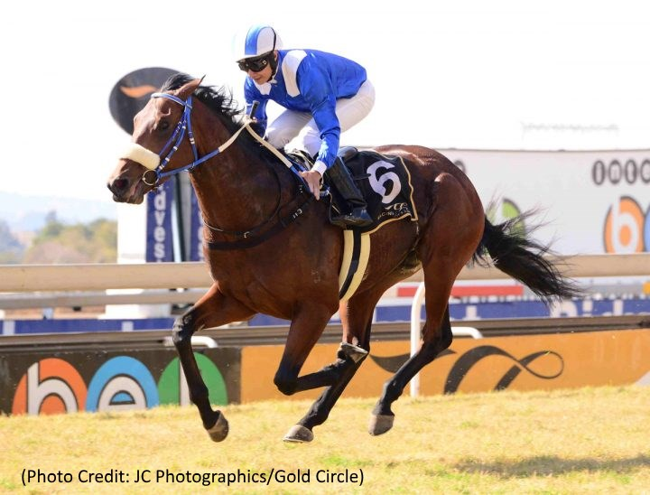 Soqrat - Horse Racing - South Africa - Photo Credit: JC Photographics / Gold Circle
