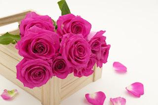 buket bunga untuk jenguk orang sakit
