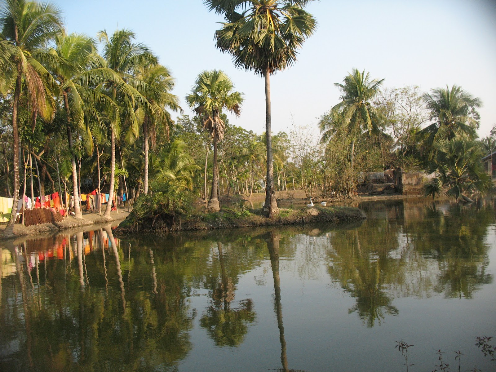 Kevinaldjohnson Bangladesh 2012 Trip Report