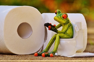 Tuit Nutrition Chronic Constipation A K A The Poop Post