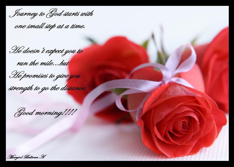lovely red roses good morning wishes images festival chaska