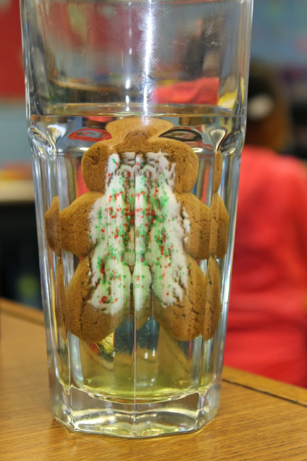 Serendipitous Discovery Gingerbread Man Science Project