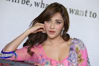 Angela Krislinzki Rogue Movie Fame Telugu Actress in Saree Backless Choli 015.JPG