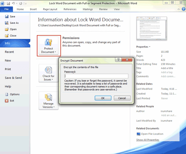 lock Word document with password full protection