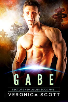 Gabe:  Badari Warriors Bk 5