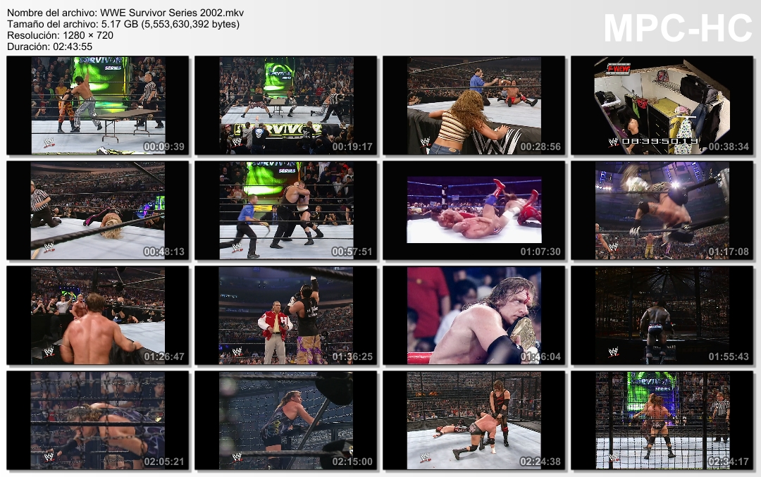 television-wwe-survivor-wwe-survivor-series-2002-720p-dualseries-2002-720p-dual-television