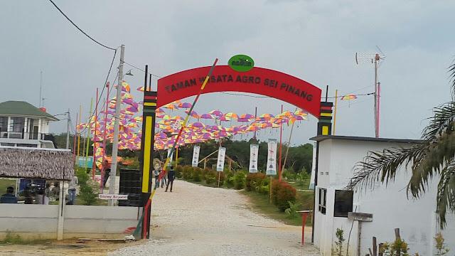 http://www.alamatpekanbaru.com/2018/04/taman-wisata-agro-nadin-sungai-pinang.html