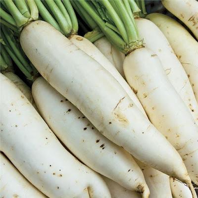 Cách phân biệt củ cải trắng trung quốc
