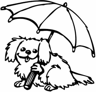 Puppy Pictures With Balloons and Umbrellas | Animals ...