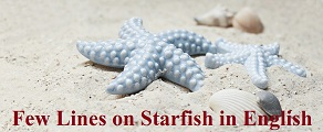 Few Lines on Starfish in English