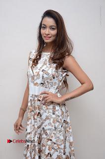 Telugu Actress Reshmi Thakur in Long Dress at Plus One ( 1) Audio Launch  0017.jpg