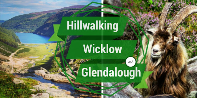 Sidewalk Safari - Hillwalking at Glendalough in County Wicklow