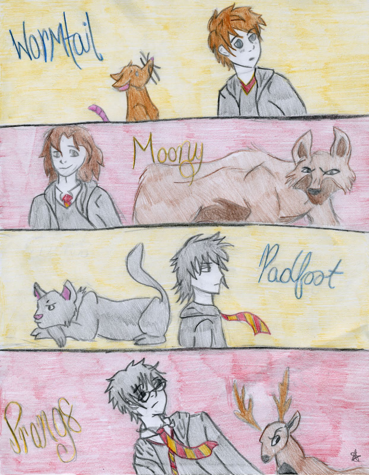 harry potter marauders