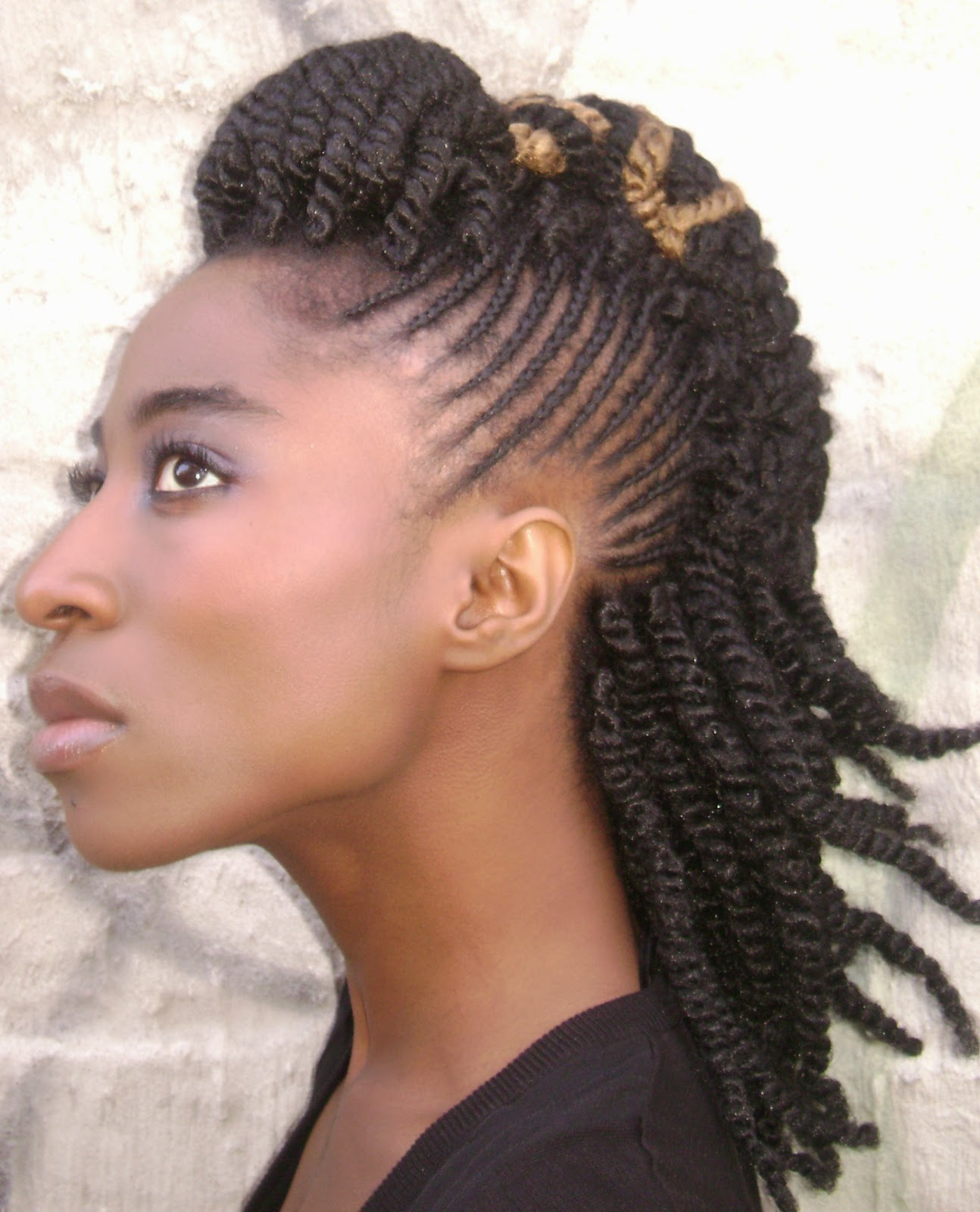 Top 18 2014 Africa America Updo Braids | Hairstyles Gallery