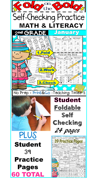 January Student Self-Checking Math and Literacy 2nd Grade - Teaching