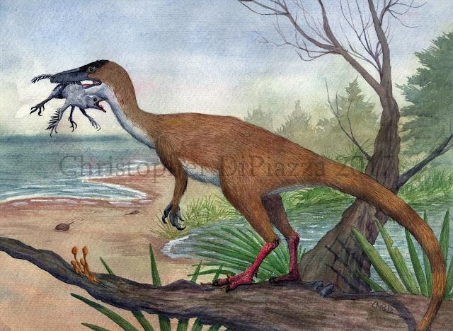 https://4.bp.blogspot.com/-QoitRuHzkQE/Wl0cqqYBz9I/AAAAAAAAGak/StF-maAAXVAl6x0bijx0t3VzD4HM-GnAACLcBGAs/s1600/Compsognathus.jpg