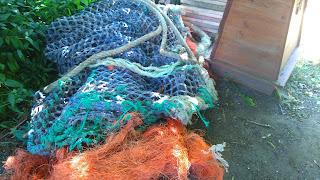 lorralorra blue trawlernet