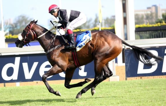Ten Gun Salute - Horse - Duncan Howells trained - Muzi Yeni - Horse Racing - South Africa - Vodacom Durban July