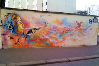 Sunday Street Art : C215 -  fresque école Cité Doré - boulevard Vincent Auriol - Paris 13 - 2011