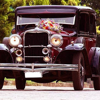 Sia Cars Wedding Car Rental In Alappuzha Premium Luxury