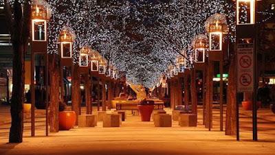 اجمل طرق مظللة بالاشجار في العالم Magical Shaded Streets