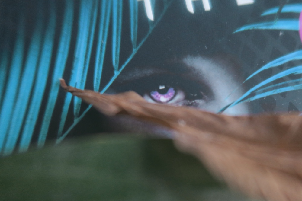 A close up of the cover of the book. Eyes can be seen peaking through some leaves that I have placed on top