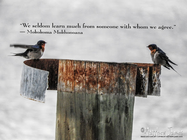 'We seldom learn much from someone with whom we agree' - Mokokoma Mokkhonoana