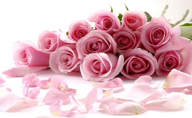 bayanlara hangi çiçekler verilir