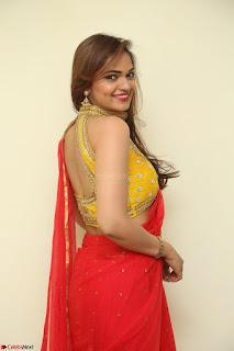 Actress Ashwini in Golden choli Red saree Spicy Pics ~  053.JPG