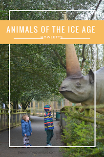 Howletts, animals of the ice age, themummyadventure.com