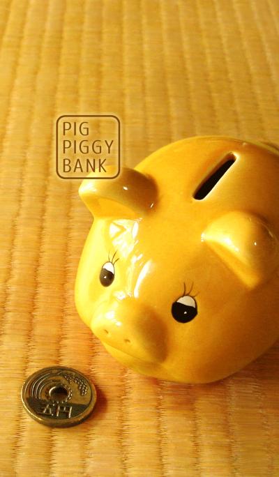 Pig piggy bank .