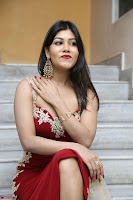 Rachana Smit in Red Deep neck Sleeveless Gown at Idem Deyyam music launch ~ Celebrities Exclusive Galleries 025.JPG