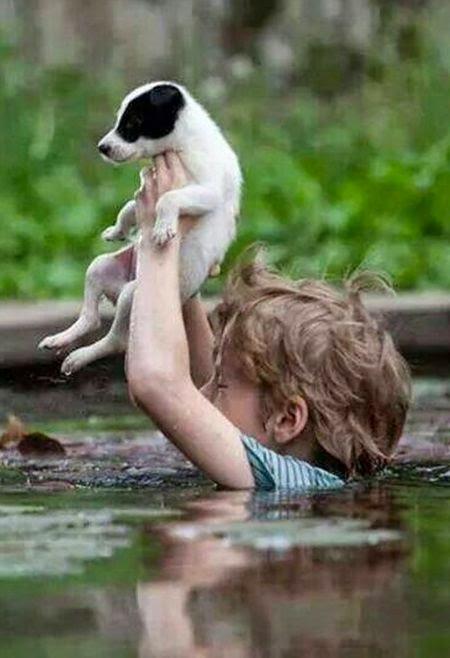See more cute dog http://cutepuppyanddog.blogspot.com/