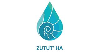 https://es-la.facebook.com/Zutut.Ha/