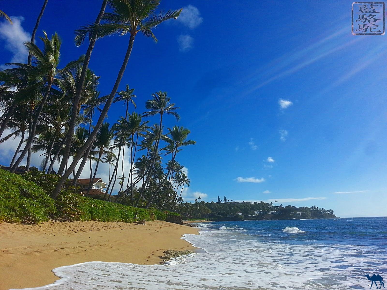 Le Chameau Bleu - Blog Voyage et Gastronomie - Cote d'Hawaii - Voyage aux USA