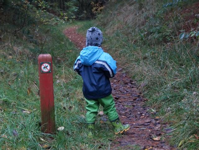 Tornby: Ein idyllisches Ausflugsziel in Nord-Dänemark. In der Klitplantage von Tornby, dem kleinen Wäldchen südlich von Hirtshals, konnten wir mit unseren Kindern super spazierengehen.