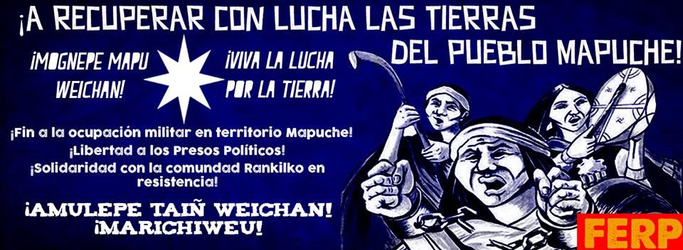 Lucha Mapuche