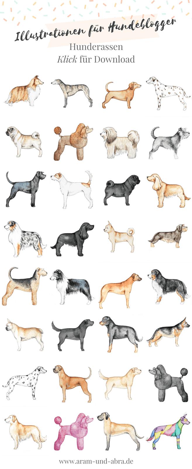 Aram und Abra - Illustrationen für Hundeblogger, Teil 2