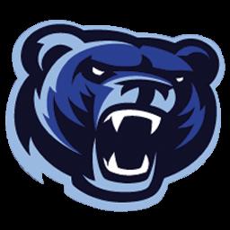 logo beruang vektor