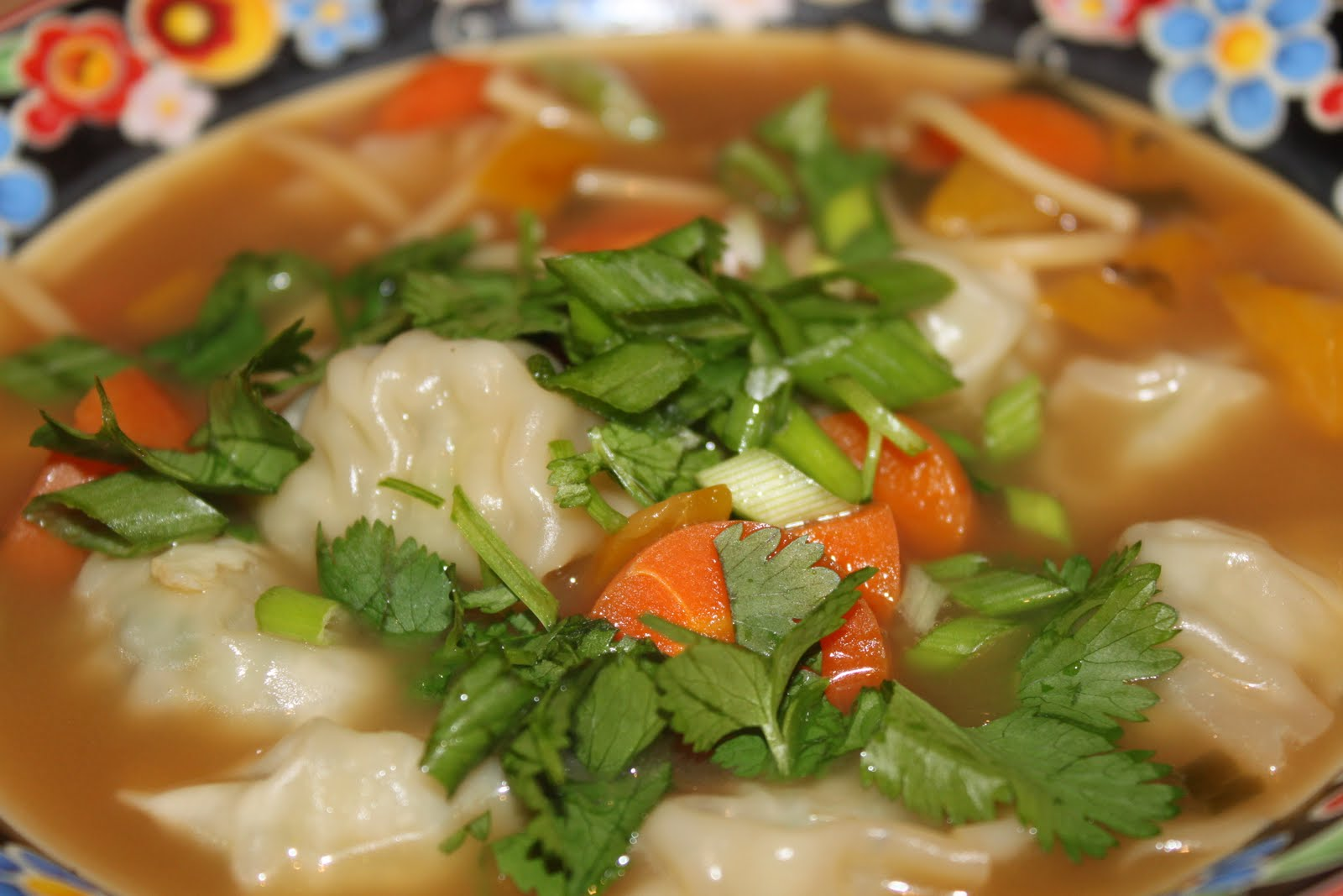 Asian Wonton Soup 102