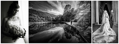 foto bianco e nero spiandorello